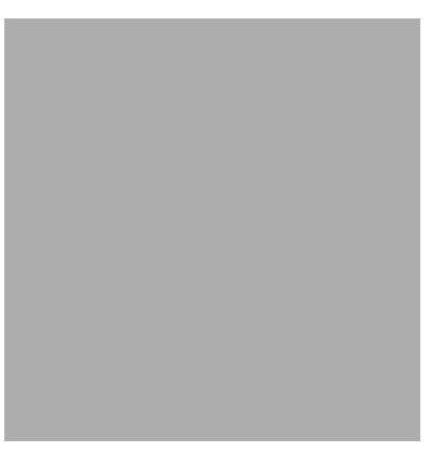 Fabricante de planchas de caucho - loseta